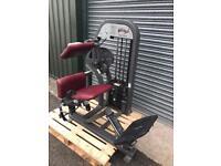 Nautilus Nitro lower back machine Commercial Gym equipment