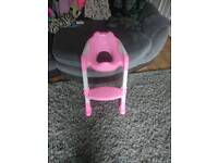 Kids potty training ladder and seat