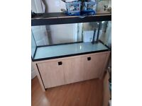 Fluval 240L fish tank