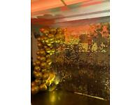 Shimmer wall Flower wall for hire