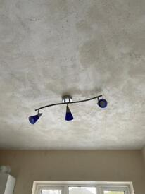 Ceiling light Free to good home