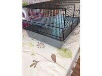 Medium hamster cage & starter kit