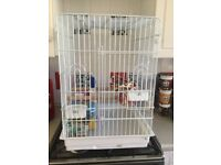 Large Parrot/ Bird Cage 2 Months Old