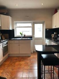Sunny 2 Bed Flat w/ Huge Terrace (some bills incl)