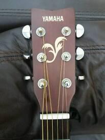 Yamaha Solid top