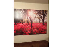 3 canvas pictures