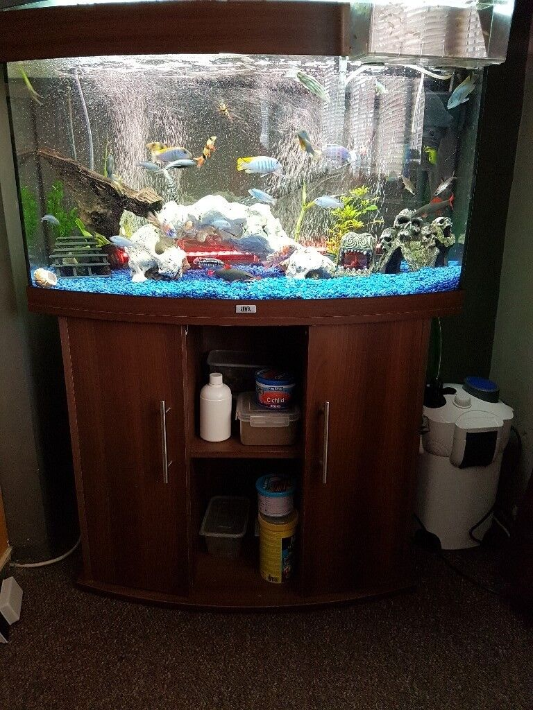 3 foot bow fronted fish tank nearly new conditio