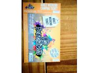 Beautiful days adult festival ticket