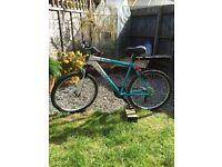 Ladies Apollo Twilight Mountain bike