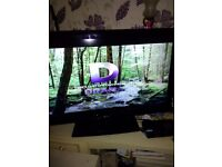 For sale LG television, 42 inch screen built in freeview