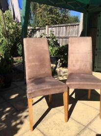 2 suede dining chairs