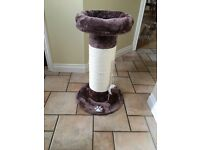 Cat tree scratching posts brand new 1 larger 1 small