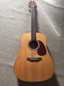 Ashton DM55S Solid Top Acoustic Guitar