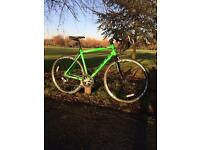 Green Viking Race bike