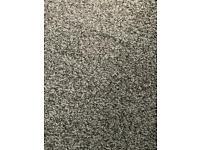 Carpet 10 x 10ft