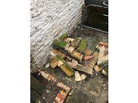 Free Bricks (some broken)
