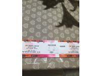 2 X Biffy Clyro Standing Tickets Newcastle Arena 2/12/16 Standing