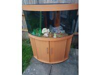 Juwel trigon 190 litre fish tank and stand