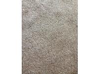 Grey wool mix carpet