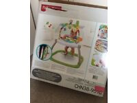 Fisher Price Spacesaver Jumperoo