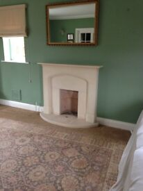 Bath stone fire surround and back