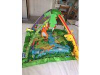 Fisherprice-Rainforest Baby Gym