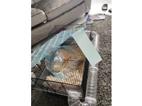 LARGE HAMSTER CAGE - INCLUDES WHEEL, RAMP, TUNNELS & FREE CARE BUNDLE