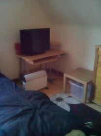 Nice room in larbert 5 mins from station