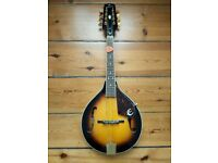 Mandolin in mint condition - Epiphone MM-30
