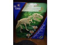 Dinosaur dig excavation kit