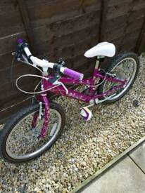 Raleigh crush girls 20inch bike