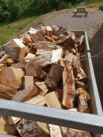 Dry Logs for sale