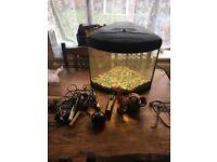 30 litre corner fish tank