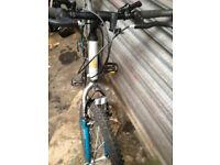 raliegh activator full size frame mountain bike