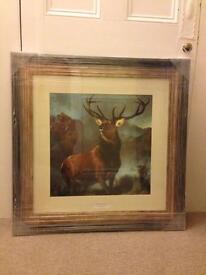 Large stag framed print