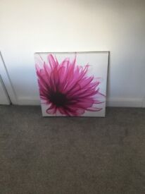 Pink canvas picture for sale