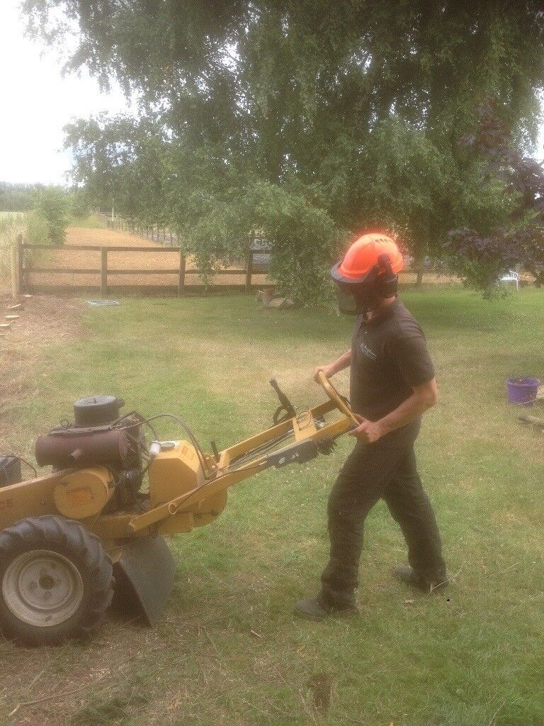 The Stump Boss, tree stump grinder, grinding, removal and clearance services. Norwich, East Anglia