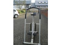GOLDS GYM STEPPER