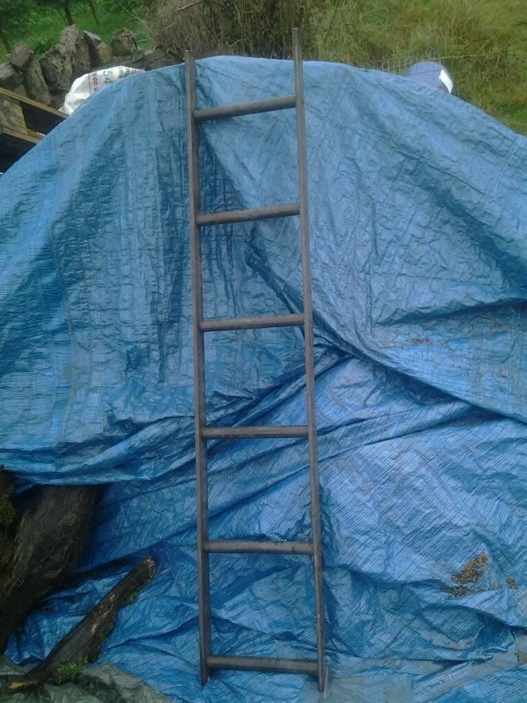Chimney ladders