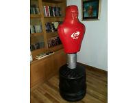 Kick Man (Bob) Martial arts kick man