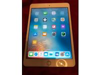 iPad mini gen 3 16gb WiFi only great condition