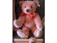 Steiff Holland Orange Bear Rare.