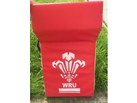 WRU Junior rugby tackling pad