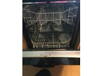 Dishwasher looking for a loving home