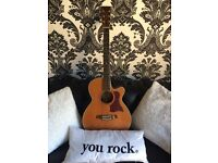 Tanglewood TW45N-NS Electro-Acoustic Guitar