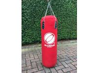 Punch bag with bag mitts