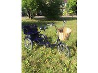 Trikidoo, family bike, cargo bike