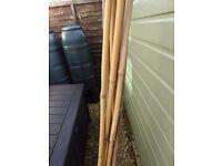 bamboo bean poles