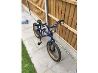 BMX bike , few scuff marks , great condition