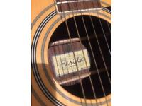 Farida acoustic guitar with case